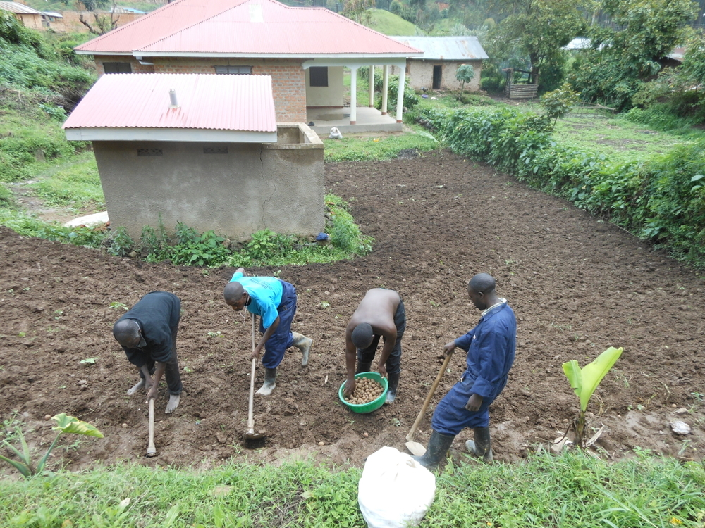 Tito_together_with_Agric_Team_Planting_Irish_Potatoes-1024x768.jpg