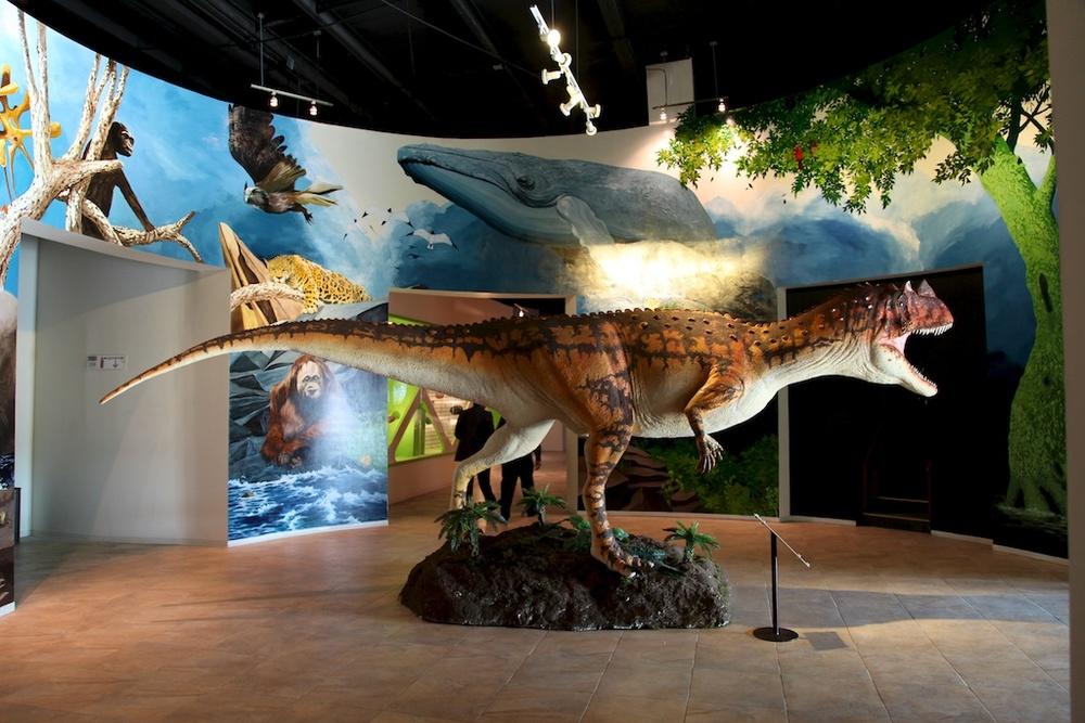 Natural History Museum Richmond Va