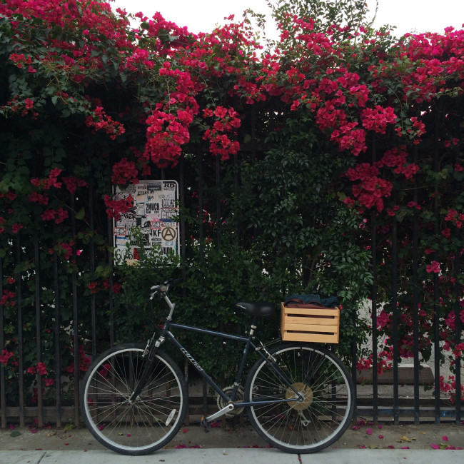 DIY Wood Bicycle Basket with Flowers
