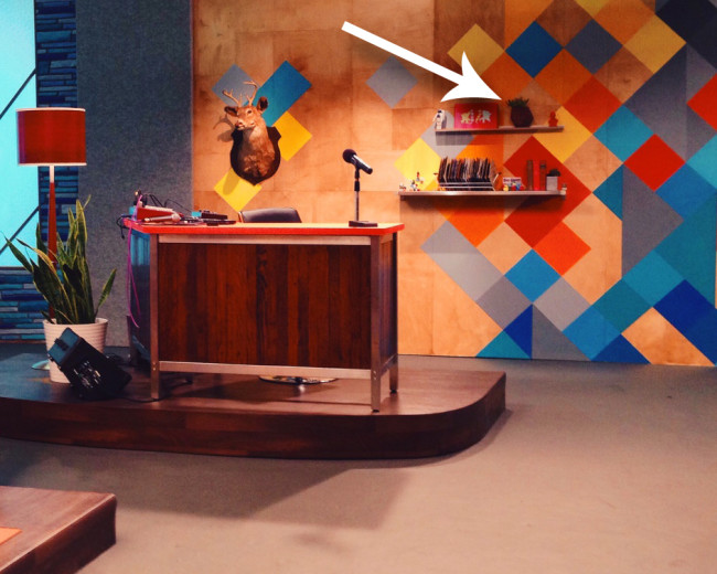 Hexagon Planter on Comedy Bang! Bang!