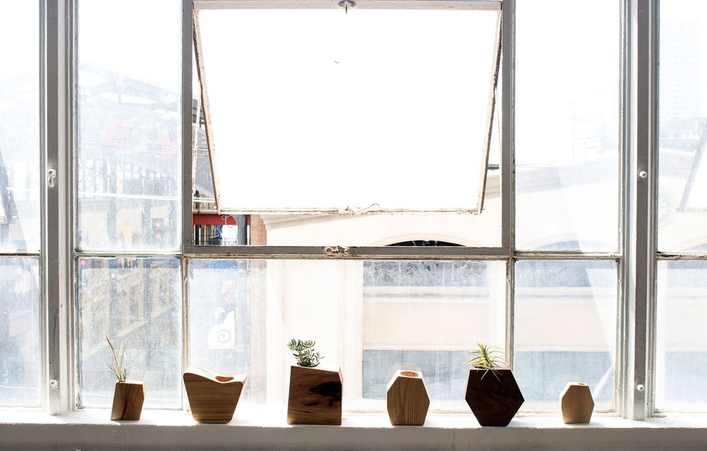 Planters in the window.jpg