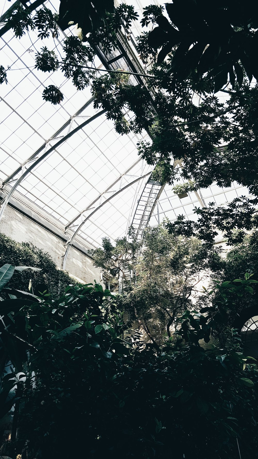 Favorite Place In DC: - United States Botanic Garden