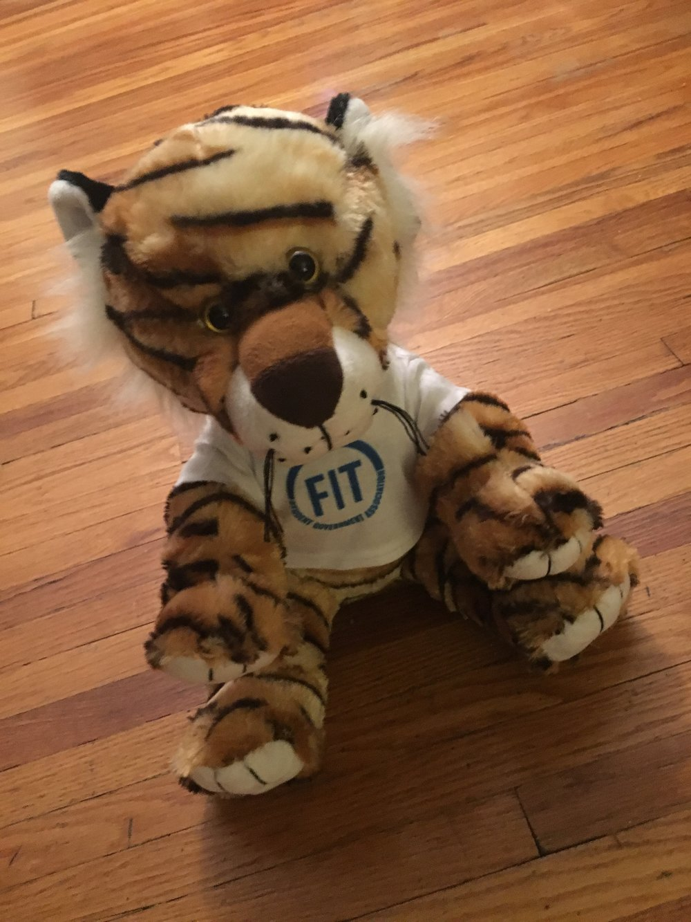 My tiger friend, Tilda Tiger. FIT's mascot is the tiger, probably.