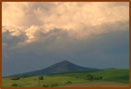 Elk's Abode - Steptoe Butte (John Clement)