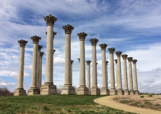 Original Capitol Corinthian Columns (1826), National Arboretum