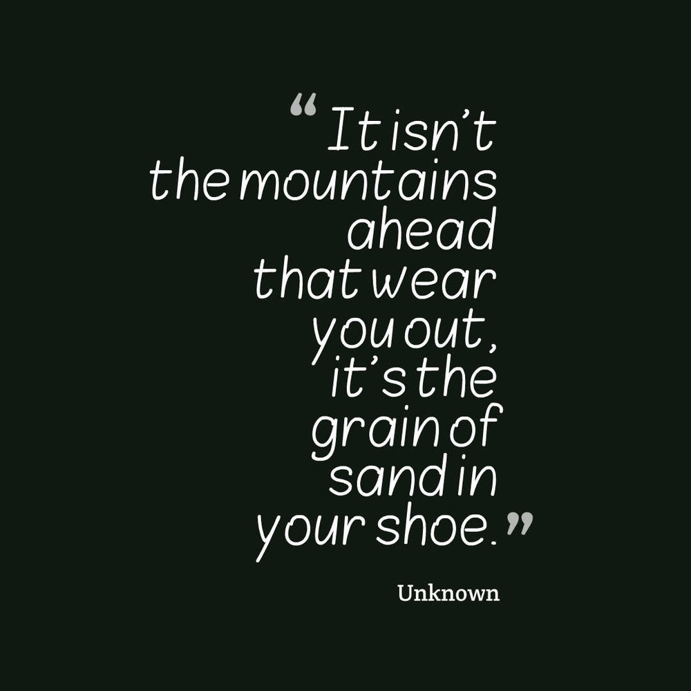 quotes-It-isn-t-the-mountai.jpg