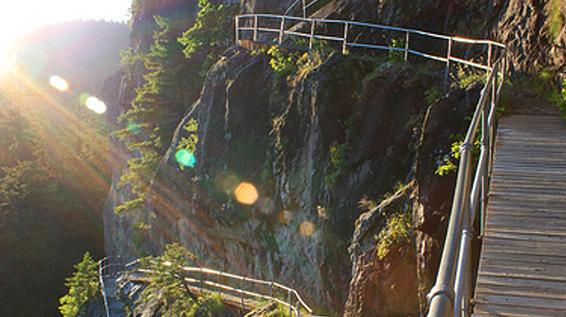 Landerholm website path photo.jpg