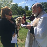 2017 Blessing of the Animals