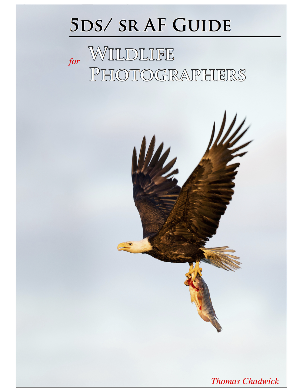 5DS: SR AF Guide Cover-.jpg