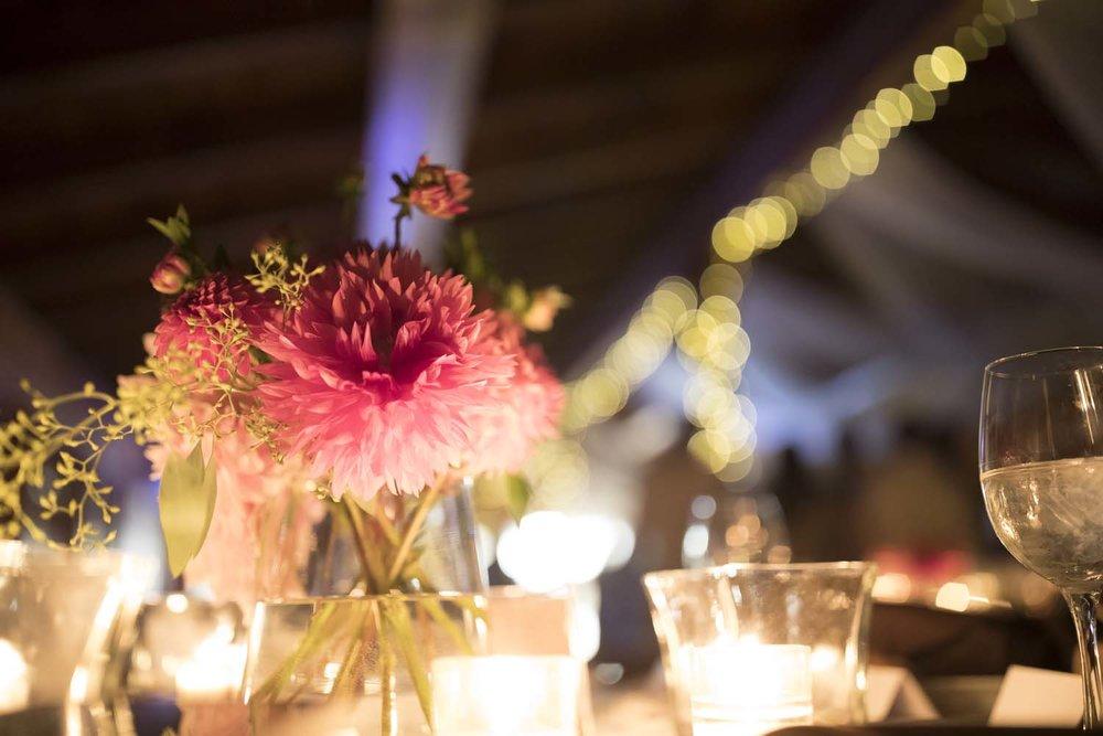 wedding-photographer_454.JPG