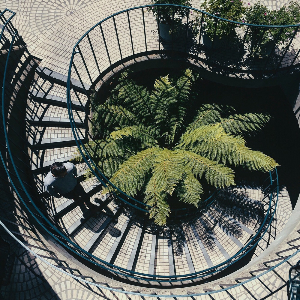 Harper found this amazing spiral staircase at the Embarcadero Center near the Ferry Building.