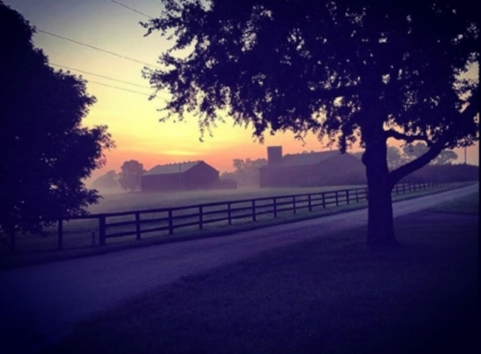 Claiborne Farm is located in Paris, KY about a 30-minute drive from Lexington, KY. The farm has been named one of the most influential in the history of horse racing and has been home to legendary horses including Secretariat. (photo credit: Claiborne Farm)