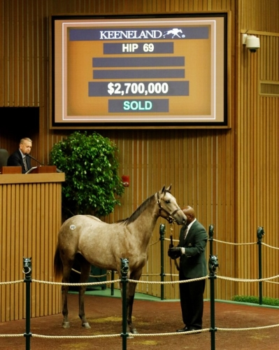 This filly by Tapit sold for $2.7 million to top the Keeneland September yearling sale. Her half-brother, Cupid, is a Grade-1 winner who is a contender for this year's Breeders' Cup Dirt Mile. (Keeneland Photo).