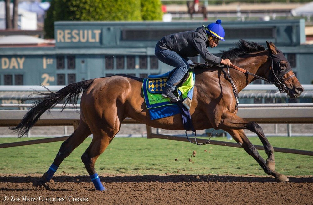 Abel Tasman, shown training at Santa Anita Park, is one of many strong contenders in the Breeders' Cup Distaff. With a purse of $2 million, the Distaff is the biggest race on Friday, the first day of the Breeders' Cup. (Photo by Zoe Metz)