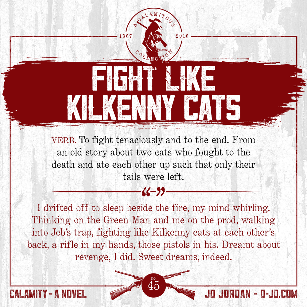 45-fightlikekilkennycats.png