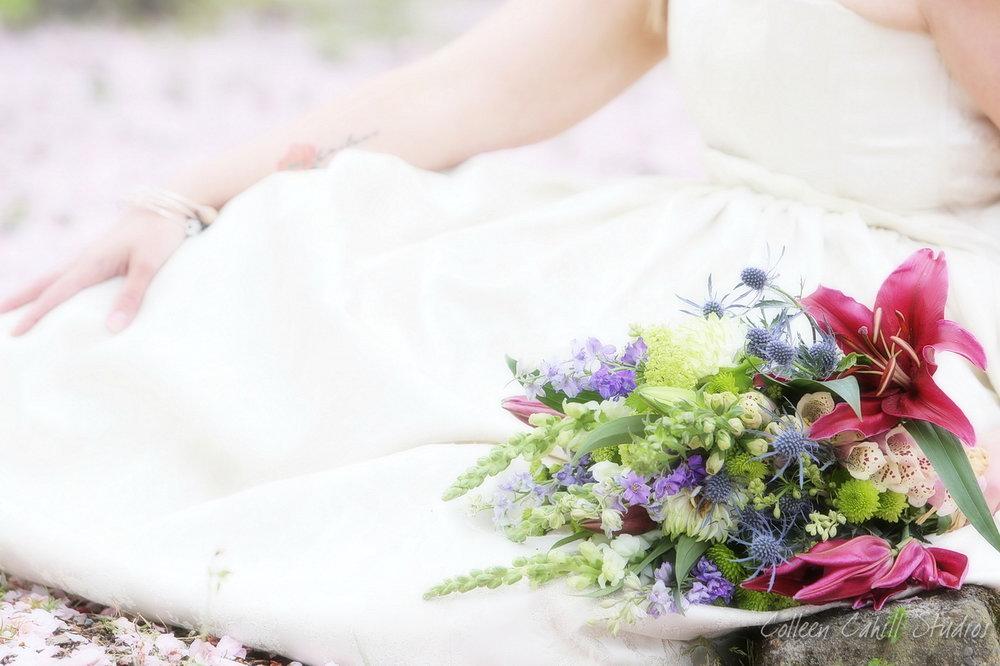cherry_blossom_FB0013.JPG