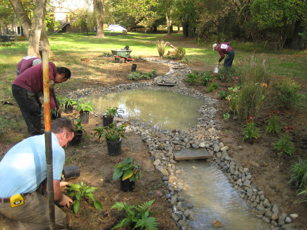 Installation of the plants. We also installed several pieces of flagstone at the dam sites along the stream to create small waterfalls. These waterfalls in turn created a relaxing, babbling sound.