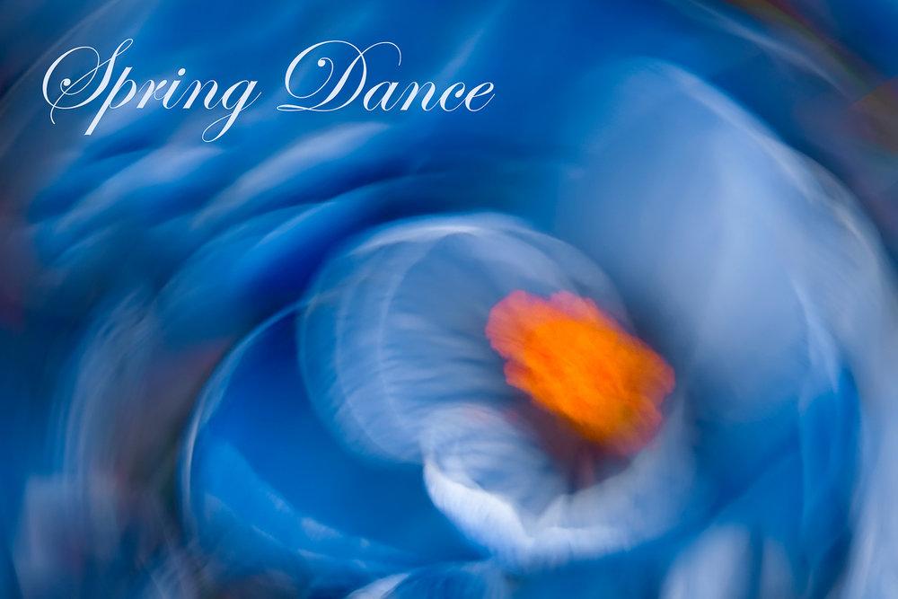 * Spring Dance *