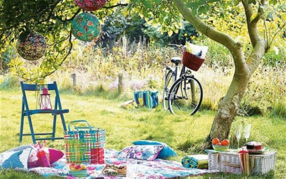 summer picnic 2.jpg