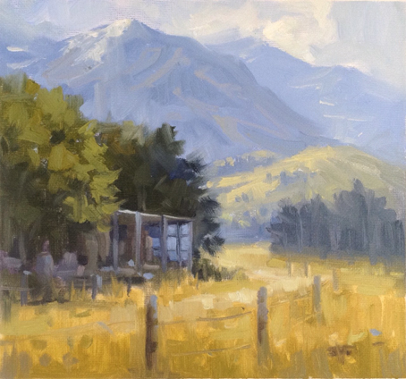 Country Life - Kaikoura