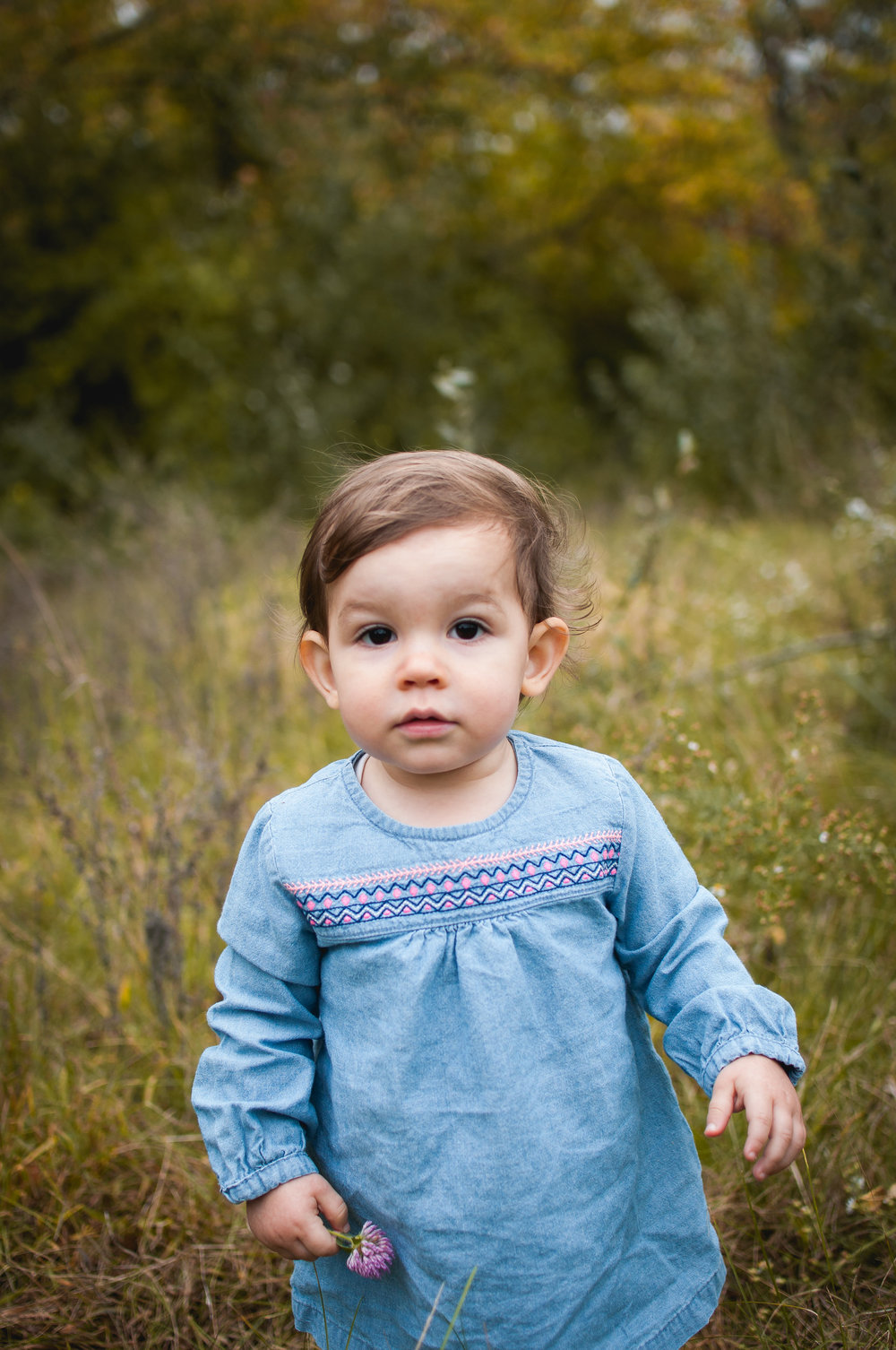 Child stands in field holding a flower during family photography session in Peoria Illinois area.