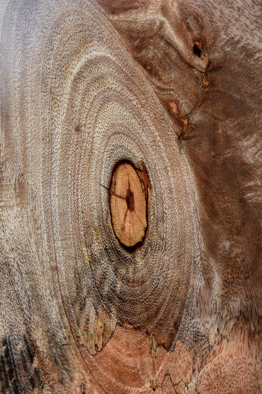 Closeup of a knot. Woah.