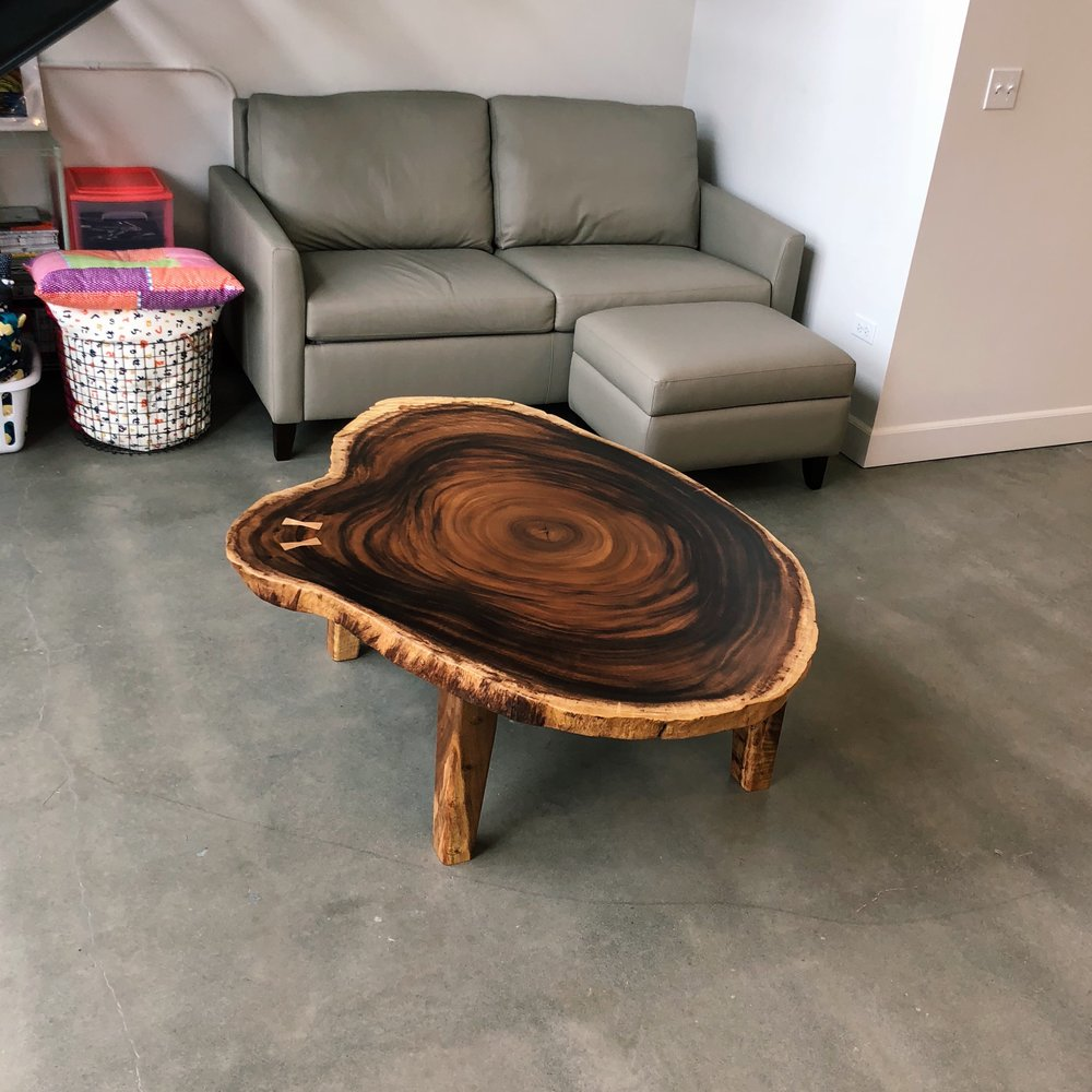 """Monkeypod """"cookie"""" coffee table. This slab is a cross-section of a monkeypod log that fell in Oahu's Waimea Valley. There are two small mango bow ties stitching a crack together, and tapered monkeypod legs for the base."""
