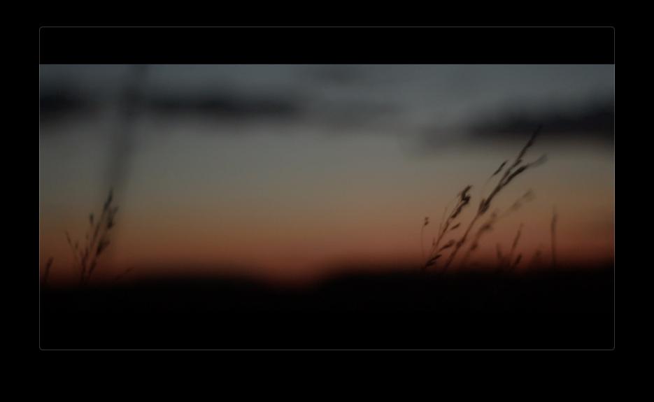 Screen Shot 2019-01-30 at 10.22.11 PM.png