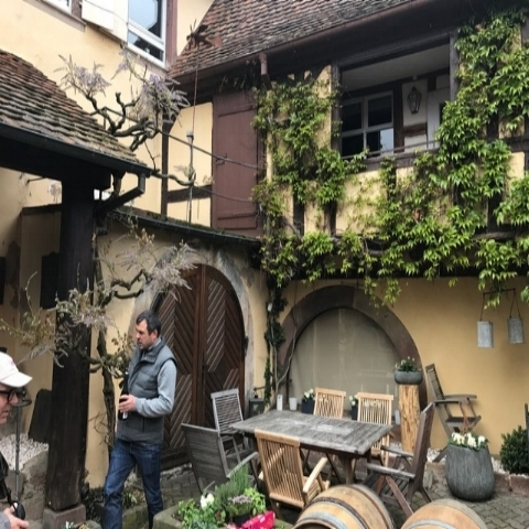 France - Alsace  Domaine Rieffel - Lucas Rieffel