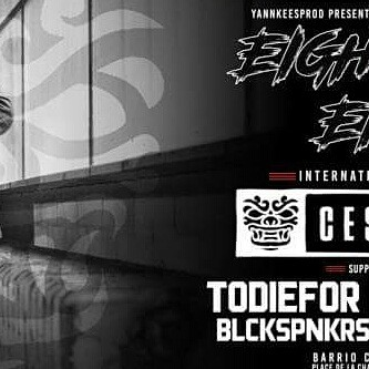 "OMG 2017 SOUNDS FUCKIN GREAT !  My first gig is in Brussels, the 3/02/2017 for the ""Eight-O-Eight"" party with @cesqeaux & my bro @todi3for !! 🔥🔥🔥🌚🔥🔥🔥 #violence #bassmusic #trap #party #djmix #twerk #hiphop #BLCKSPNKRS"