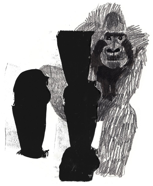 gorilla-pencil-clean.jpg