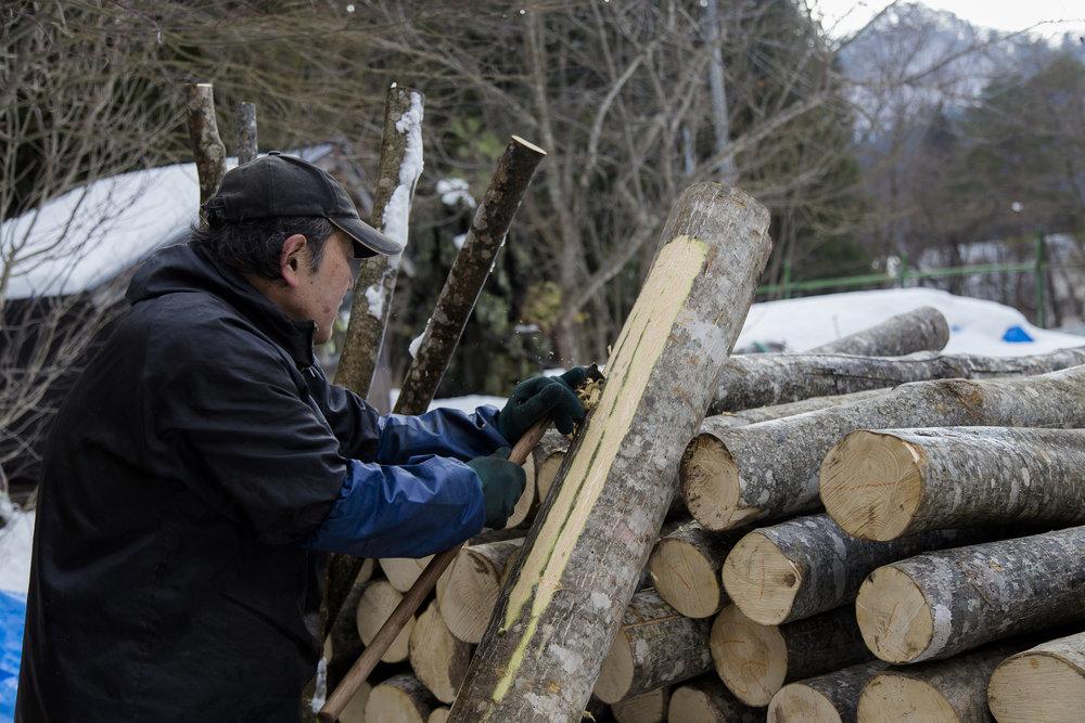 p8_drying wood.jpg