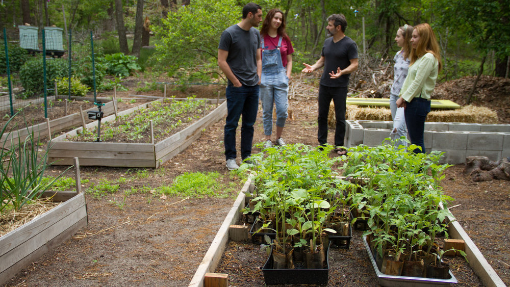 The ECI Teaching Garden at Sweet Woodland Farms