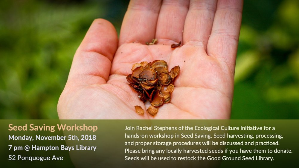 Seed Saving Workshop - Nov 5th, 2018 - FB cover 1920x1080.jpg