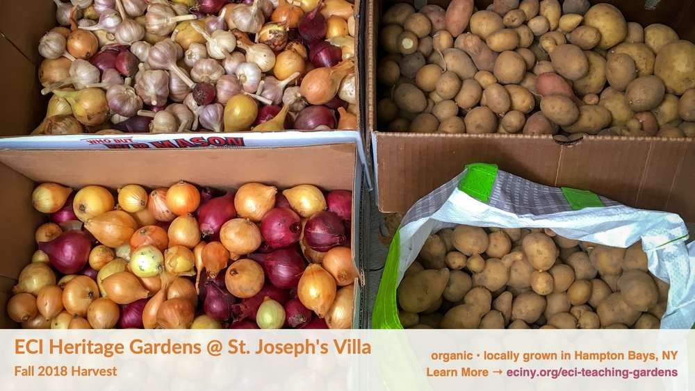 ECI Heritage Gardens harvest - 20181106 - FB cover 1920x1080.jpg