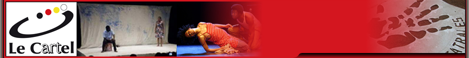 The Cartel   The  Cartel is an innovative management structure for five theatres in Burkina Faso: la Compagnie Falinga, le Théâtr' Evasion, le Théâtre Eclair, l'AGTB and la Compagnie du fil. The Cartel was part of the evaluated Programme.
