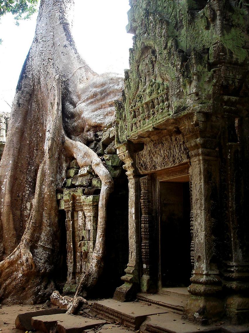 Cambodia, Jan, 2006