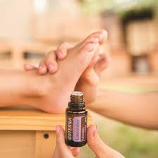 Click   to Learn Essential Oil Basics