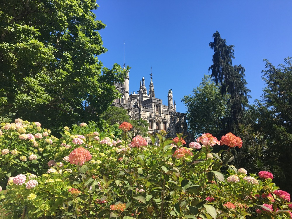 Quinta da Regaleira in full bloom