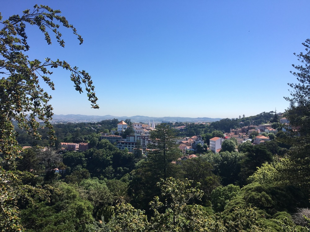 Looking out to Sintra from the Quinta da Regaleira