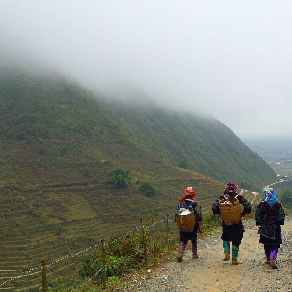 Trekking with the  Sa Pa Sisters  of the Hmong Tribe.