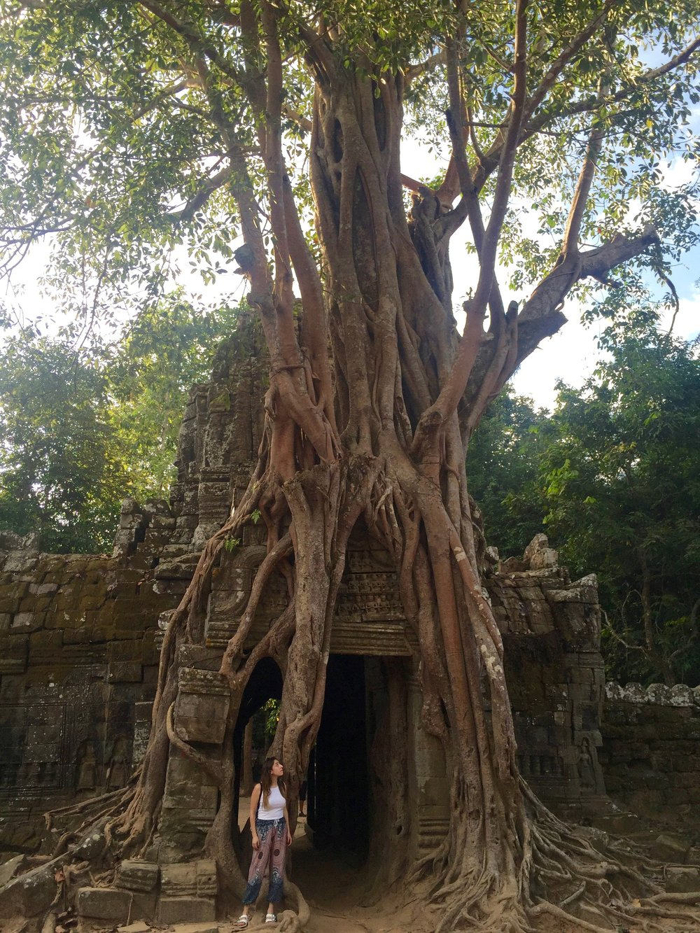 I was completely mesmerized by this tree that climbed up the back side of Ta Som Temple.
