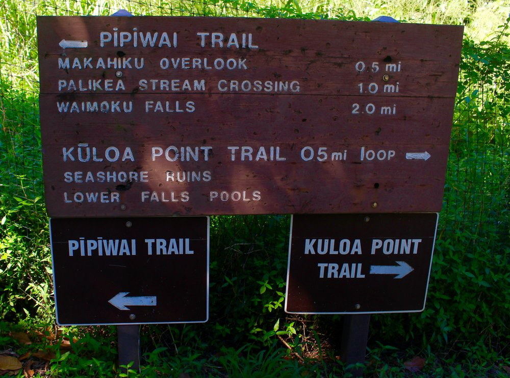 Make sure you do both! We started with the Pipiwai Trail and then ended at Kuloa Point to see the 7 sacred pools, aka O'heo Gulch.