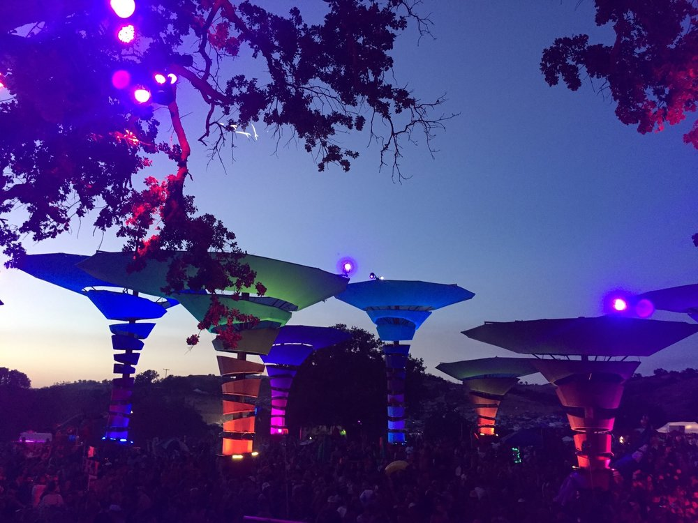 Views from Lightning in a Bottle's Woogie stage. I took this picture from backstage at the Lee Burridge show. (May, 2016)