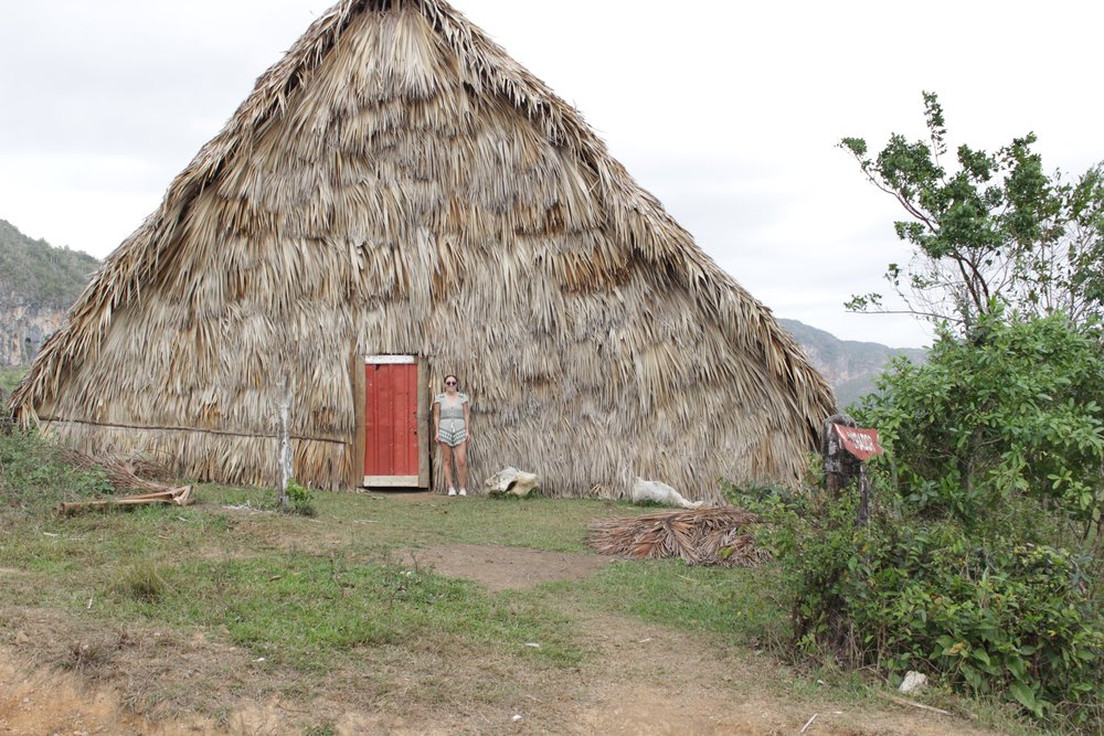 These huts are used to dry tobacco.