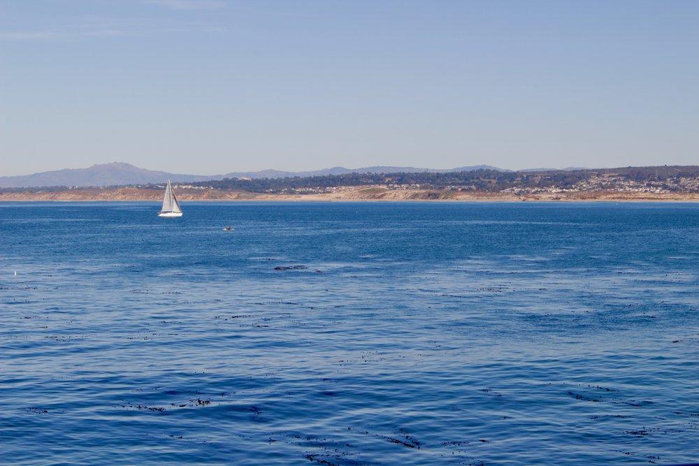 boats-monterey-ca.jpg