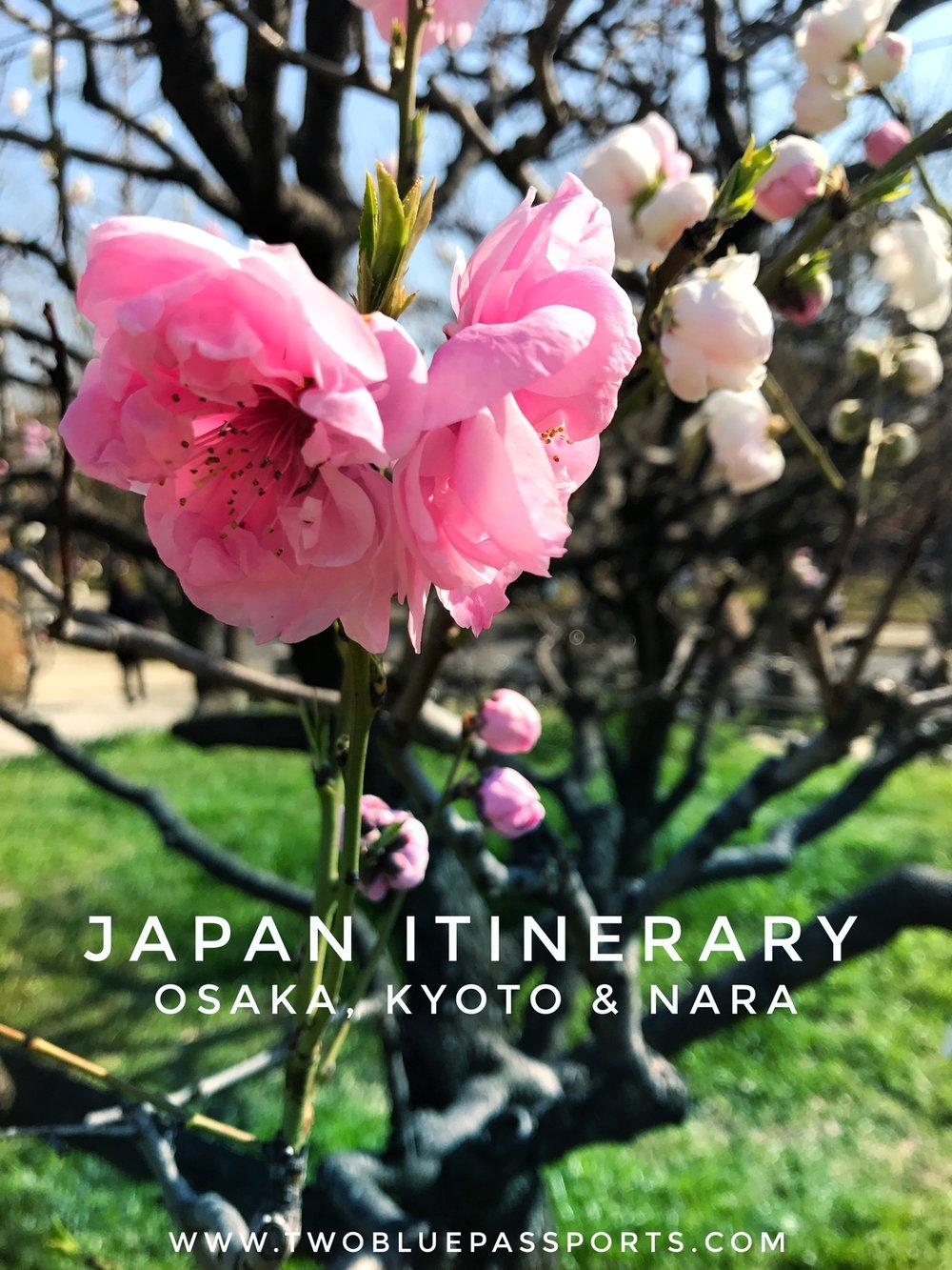 Pinterest-Japan.jpg