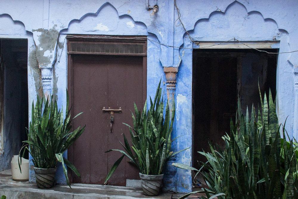 The prettiest blue doorway in Delhi.