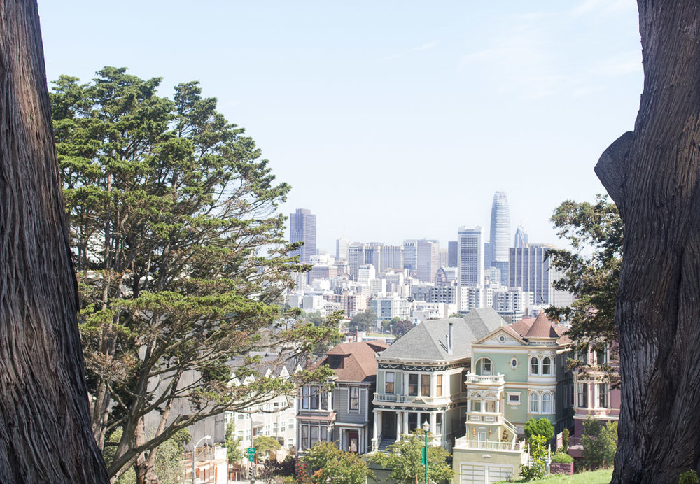 My favorite park in San Francisco, Alamo Square.