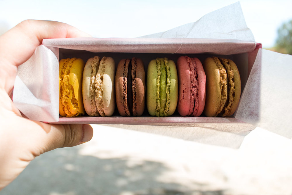 From left to right we have: lemon, vanilla, chocolate, pistachio, raspberry and salted caramel.